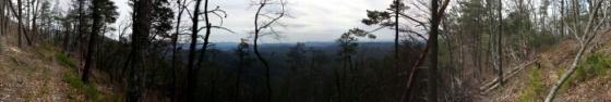 Photography: Wolf Ridge Trail